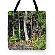 Northern Woods Tote Bag