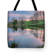 Northfield Daffodils Sunset Tote Bag