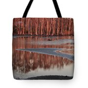 Northshore Cypress Tote Bag