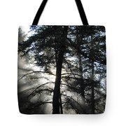 Northwoods Morning Tote Bag