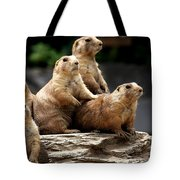 Nosey Bodies Tote Bag
