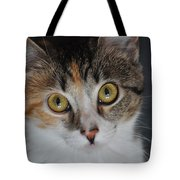 Nosey Lil Kitty Tote Bag