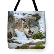 Not Any Closer Tote Bag