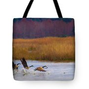 Not Following The Crowd Tote Bag