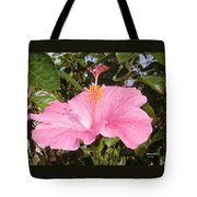 Soothes Your Soul -  Aroma Touch Tote Bag