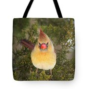 Not-so-angry Bird Tote Bag