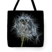 Not So Perfect Dandelion Tote Bag