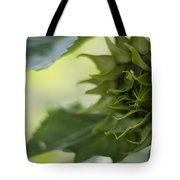 Not Sunny Yet Tote Bag