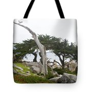 Not The Ghost Tree Tote Bag