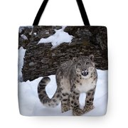 Not Too Close -  Please Tote Bag