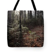November In The Pines Tote Bag