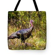 November  Oh My Tote Bag