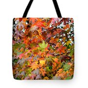 November's Maples Tote Bag