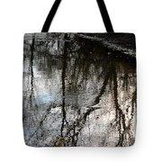 November's Rippled Reflections Tote Bag