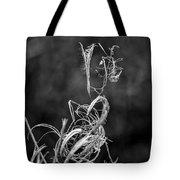 Novembers Ways Tote Bag