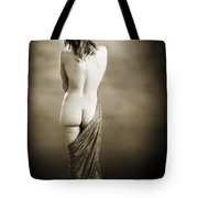Nude Female Backside 1038.01 Tote Bag