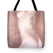 Nude Female Torso Drawings 3 Tote Bag