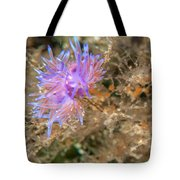 Nudibranch 2 Tote Bag