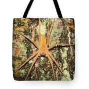 Nursery Web Spider Tote Bag