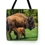Nursing Newborn Tote Bag