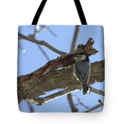Nuthatch Getting To The Good Stuff Tote Bag