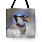 Nuts To This Winter Tote Bag