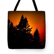 Nw Evening L Tote Bag