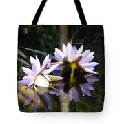 Nymphaea Colorata. Water Lilies Tote Bag