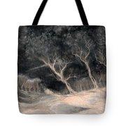 O2 Tote Bag