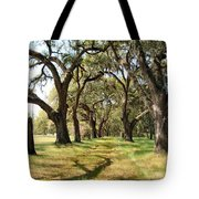 Oak Allee At Roseland Plantation  Tote Bag