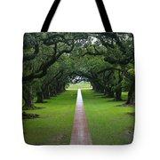 Oak Alley Tote Bag