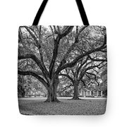Oak Alley Grounds Bw Tote Bag