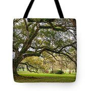 Oak Alley Reverie Tote Bag