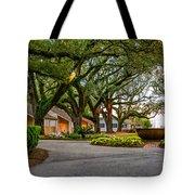Oak Alley Slave Quarters Tote Bag