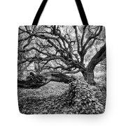 Oak And Ivy Bw Tote Bag