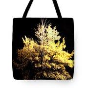 Oak At Night Tote Bag