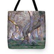 Oak Grove Tote Bag