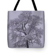 Oak In Snow Tote Bag