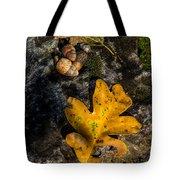 Oak Leaf And Acorn In Autumn Tote Bag