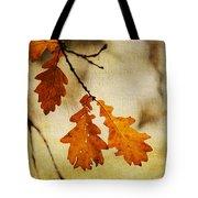 Oak Leaves At Autumn Tote Bag