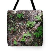 Oak Nursery Tote Bag