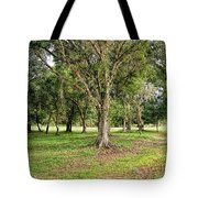 Oak Tote Bag