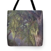 Oak Tree And Spanish Moss In The Mist Tote Bag
