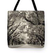 Oak Trees Of Charleston South Carolina In Sepia Tote Bag