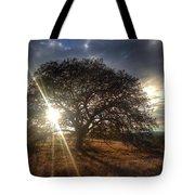 Oak Tree At The Plateau Tote Bag