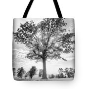 Oak Tree Bw Tote Bag