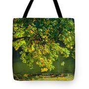 Oak Tree By The Pond - Featured 3 Tote Bag
