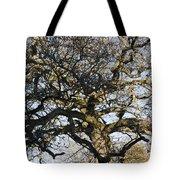 Oak Tree In Winter Tote Bag