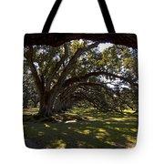 Oak Trees   #5794 Tote Bag