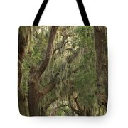 Oaks Of Georgia Tote Bag